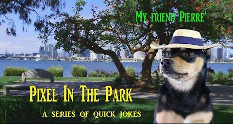 Pixel In The Park...My friend Pierre'