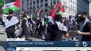 Rally in support of Palestine in Downtown San Diego