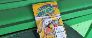 Book fairies keep kids reading through summer