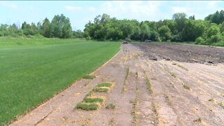 Farmers facing drought conditions