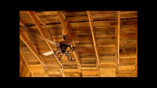 FREE Rustic Wood Ceiling! - Homemade Pallet Building Construction