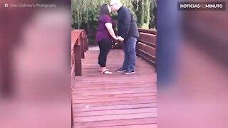 Pedido de casamento em cima de uma ponte tem tudo para acabar mal