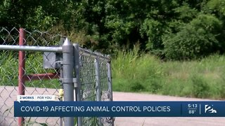 COVID-19 impacts animal control policies