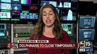 Dolphinaris to close temporarily