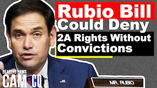 Rubio Bill Could Deny 2A Rights Without Convictions