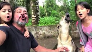 Dog pours his entire heart into howling performance with his family