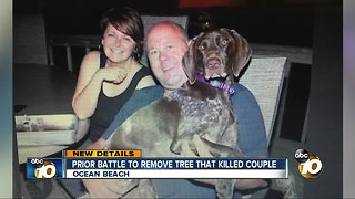 Prior battle to remove tree that killed couple
