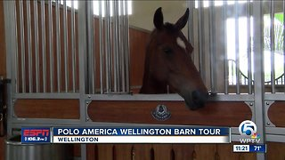 Polo America Wellington Barn Tour