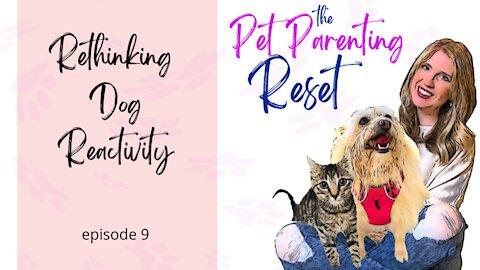Rethinking Dog Reactivity | The Pet Parenting Reset, episode 9