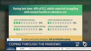 Some thrive while others suffer during pandemic