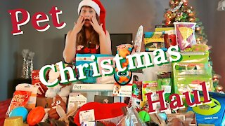 Massive Christmas Shopping Haul For My 7 Pets 2020