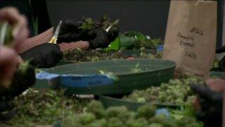 Colorado marijuana telemedicine visits to end in July