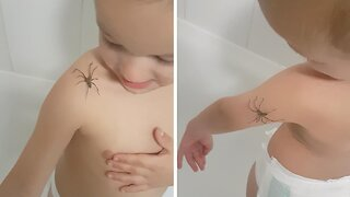 Brave 3-Year-Old Happily Lets Spider Crawl All Over Him