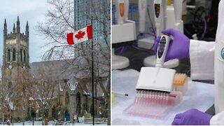 Ce que tu dois savoir sur le vaccin Pfizer contre la COVID-19 et sa distribution au Canada