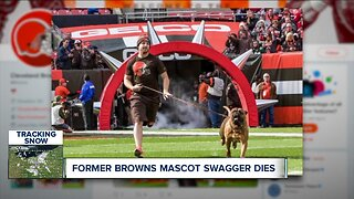 Former Browns mascot Swagger dies unexpectedly at the age of 6