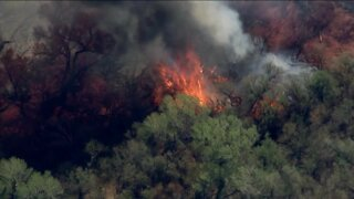 Evacuations ordered as crews battle Margo Fire in east Pinal County