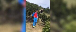 Bear follows boy through mountains