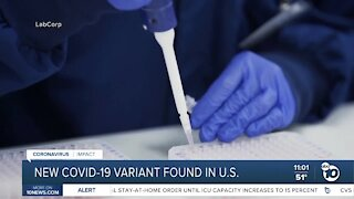 New COVID-19 variant found in U.S.