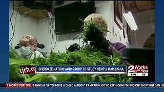 Cherokee Nation workgroup to study hemp and marijuana