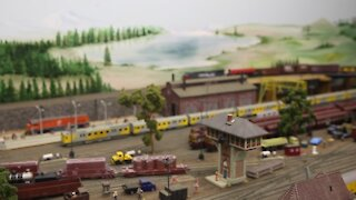SOUTH AFRICA- Durban- Model train collectors (cwx)