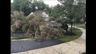 Storms cause damage across metro Detroit
