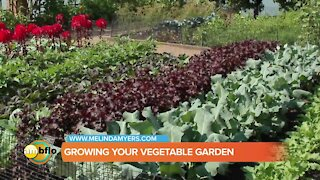 Melinda's Garden Moment - Beautiful and Productive Vegetable Gardens and Containers