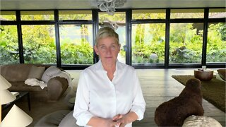 PR Manager Explains How Ellen Can Rebound