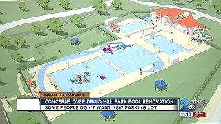 Concerns rise over Druid Hill Park pool renovation
