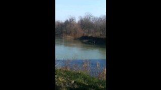Black River in Arkansas