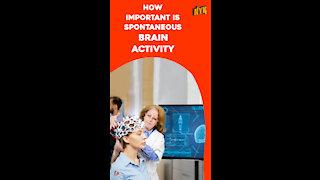 How Spontaneous Brain Activity Keeps You Alive