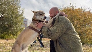RUSSIAN FAMILY WELCOME WOLF TO LIVE IN THEIR APARTMENT