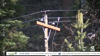NV Energy customers on Mount Charleston prepare for potential power outages