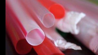 Colorado legislature considers regulating plastic straws