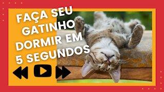 make your cat sleep in seconds