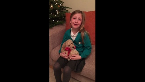 Little girl overwhelmed by new puppy surprise