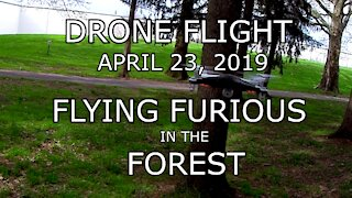 Drone Flight - Flying Furious in the Forest