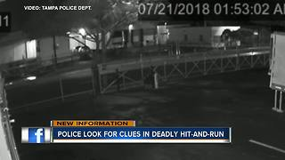 Tampa Police looking for driver behind deadly hit-and-run crash involving a skateboarder
