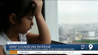 Local organization sees increase in grief counseling training sessions for schools