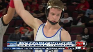 11 local wrestlers medal at state championships