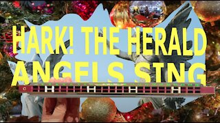 How to Play Hark the Herald Angels Sing on a Tremolo Harmonica with 24 Holes