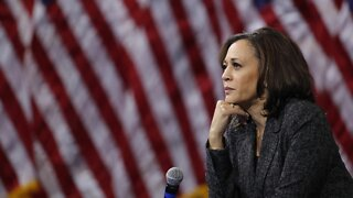 Congressional Black Caucus Vice Chair Reacts to Harris as VP Pick