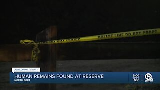 Could recovered remains be Brian Laundrie?