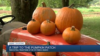 A trip to the pumpkin patch: Dr. D's Farm & Ranch