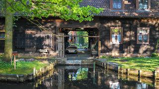 Spring in the Spreewald