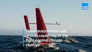 Autonomous Sail Drones