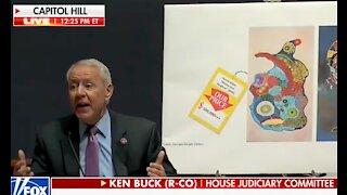Rep. Ken Buck Rips Apart Hunter Biden Art Scheme