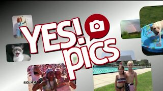 Yes! Pics - 11/17/20