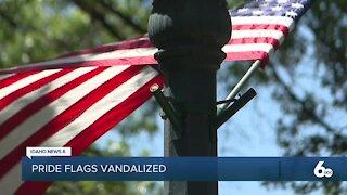 Pride Flags Vandalized