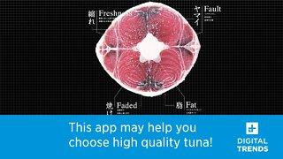 Tuna Scope Helps You Choose High Quality Tuna