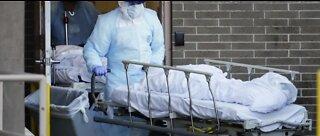 Surge in new coronavirus cases in the U.S.